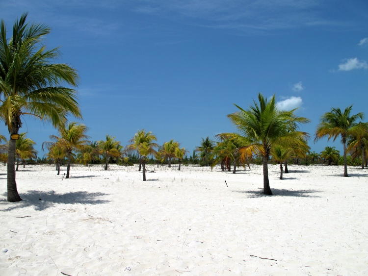 Try to travel off season to keep the costs down (Cayo Largo, Cuba)