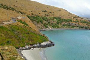 Otago Peninsula, New Zealand