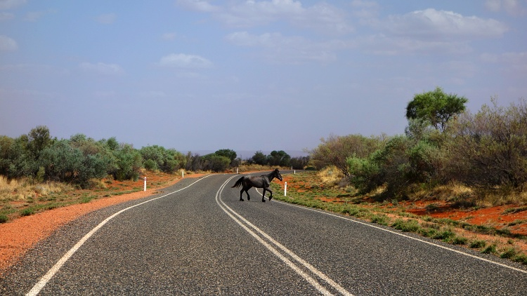 Always allow extra time for the unexpected (Red Centre Way, Australia)