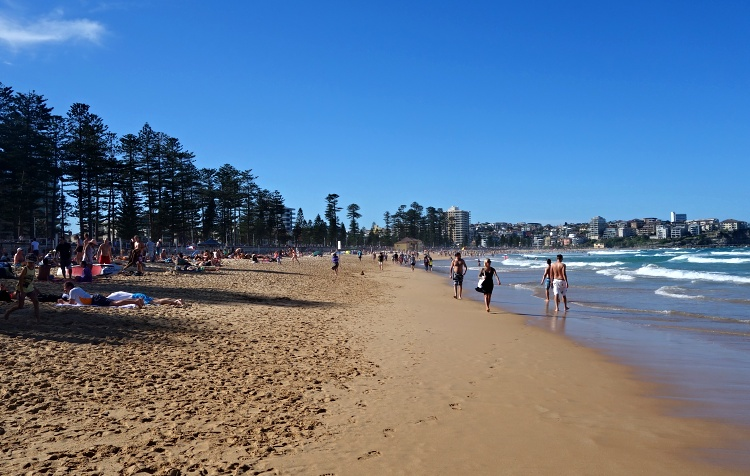 Manly beach is great for surfing, swimming and sunbathing