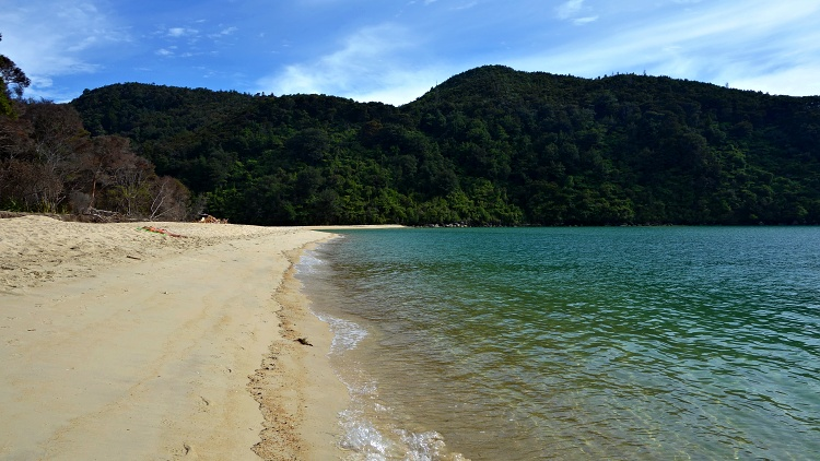 Motorhomes are more expensive than cars but you save money on accommodation and food (Abel Tasman National Park, New Zealand)