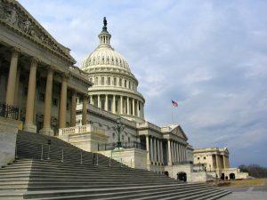 U.S. Capitol, Washington D.C