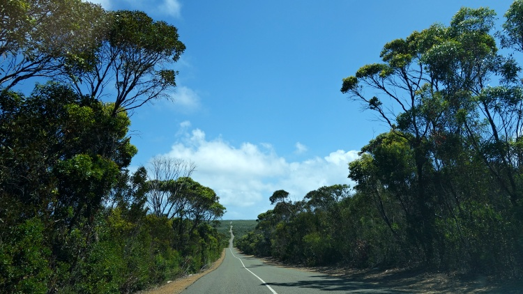 The best way to explore the island is by car